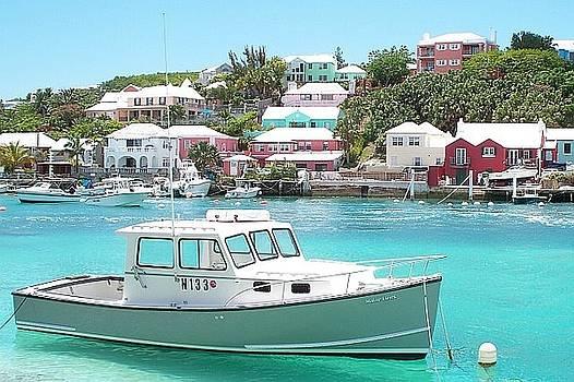 Boat In Bermuda by Polly Rickman