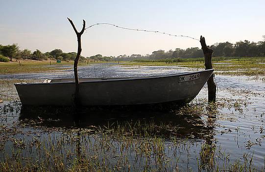 Boat in the Buteti River - Botswana  by James Wasdell