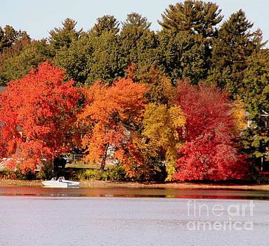 Boat on Silver Lake Wilmington by Lennie Malvone