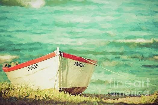 Boat on the shore by Howard Ferrier