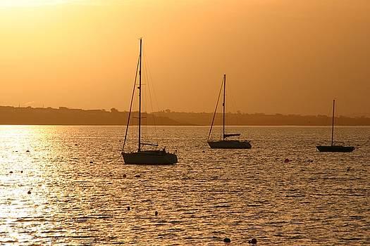 Martina Fagan - Boat Silhouette