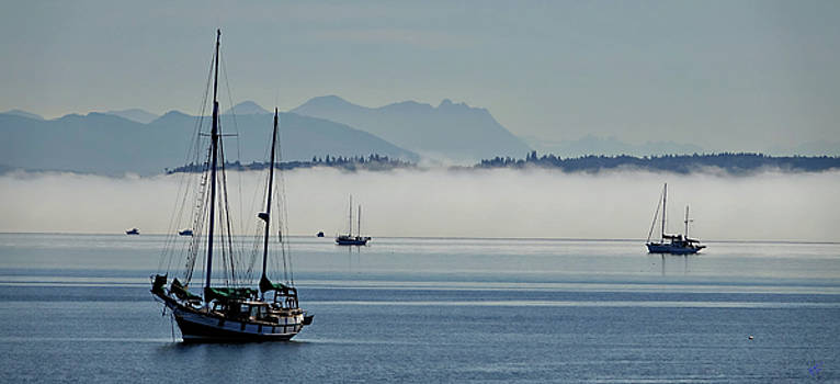 Boats and Fog by Rick Lawler
