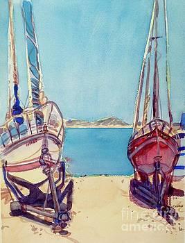 Boats, Cholla Bay by Virginia Vovchuk