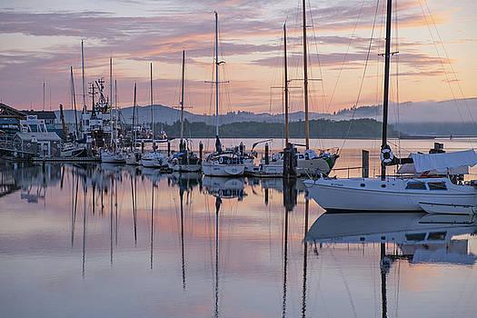 Boats in Pastel by Suzy Piatt