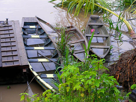 Boats of the Amazon by Pilar  Martinez-Byrne