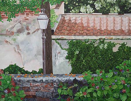 Boboli Gardens by Steven Fleit