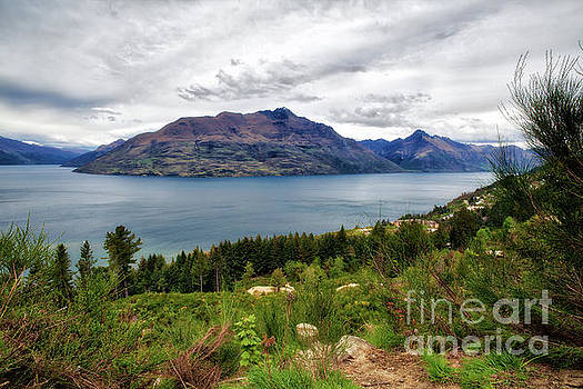 Bob's Peak NZ by Erika Weber