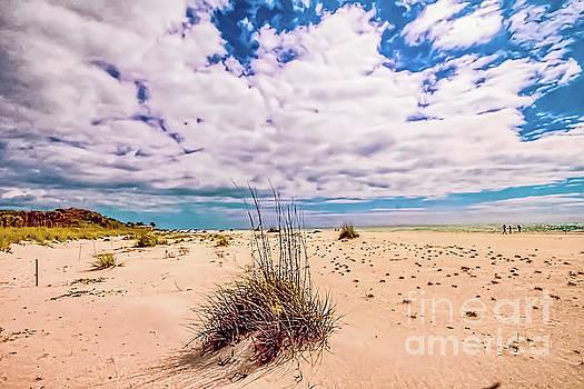 Boca Grande Beach by David Lane