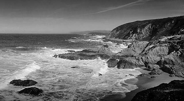 Bodega Bay Black and White by David Cabana