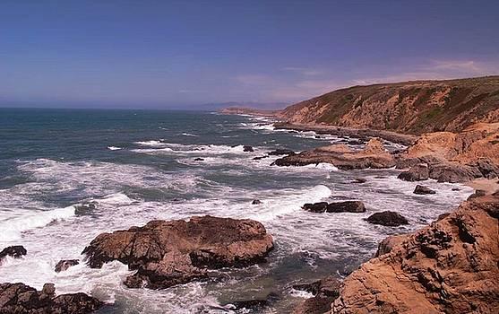 Bodega Head by Lawrence Pratt