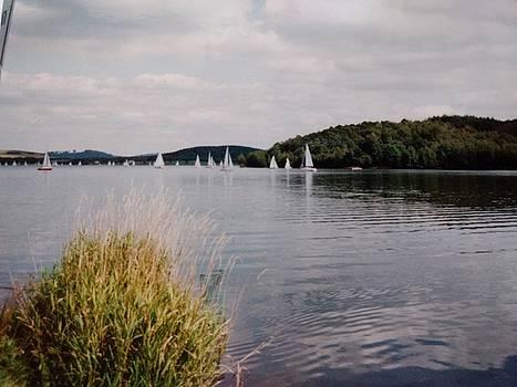 Bodensee German Lake by Muri McCage