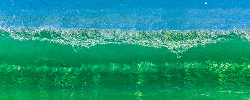 Paula Porterfield-Izzo - Body Surfing