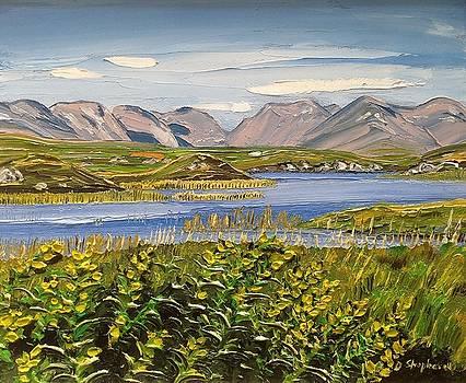 Bog Road Connemara Co Galway by Diana Shephard