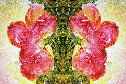 Bogomil Anniversary Flower - DIGITAL by Otto Rapp