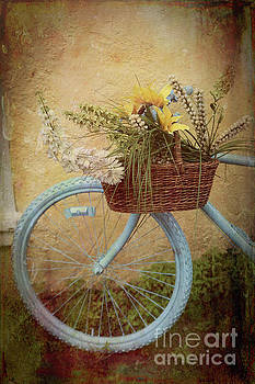 Bohemian Bicycle by George Oze
