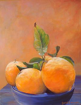 Bol d Oranges by Muriel Dolemieux