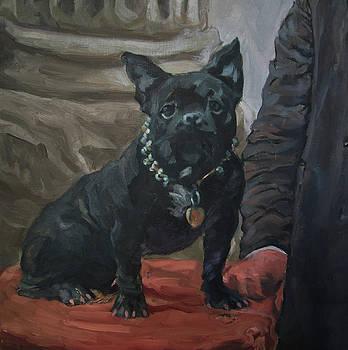 Bonaparte the French Bulldog by Lynn Gimby-Bougerol