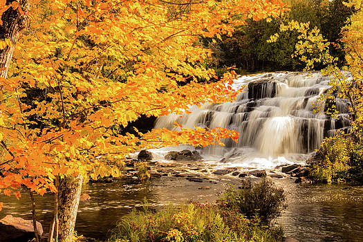 Bond Falls and Maples by Joe Ladendorf