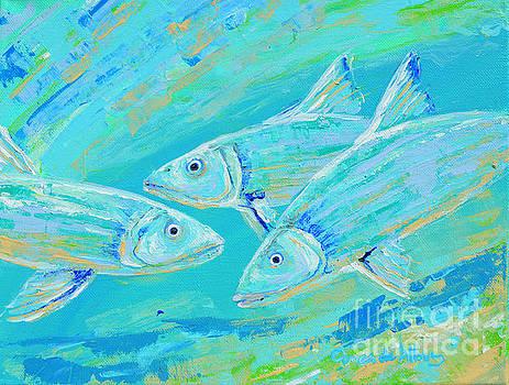 Bonefish15 by Paola Correa de Albury