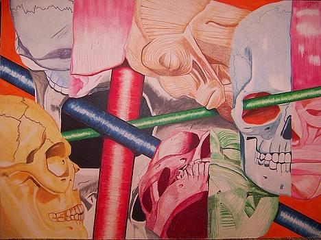Bonehead by Sherri Ward