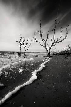 Boneyard Beach I by Steven Ainsworth