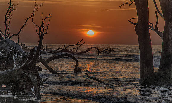 Boneyard Beach by Jim Cook
