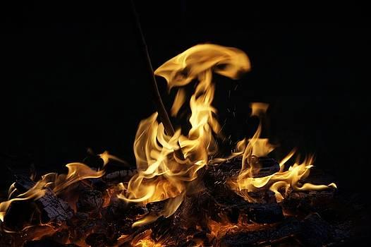 Bonfire by Susan Raida