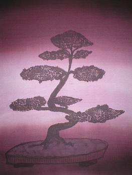 Bonsai by Christine  Davis