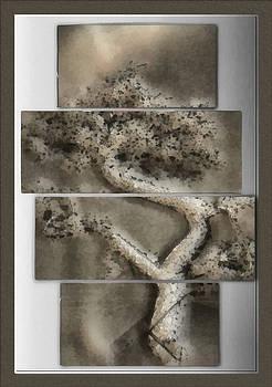 Bonsai Illustrative by Mario Carini