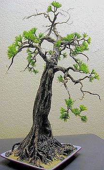 Bonsai Pine Tree Sculpture ALL HAND-CRAFTED Non-Metal Original ECO Art by Nelbert  Flores