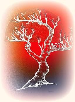 Greg Moores - Bonsai Red