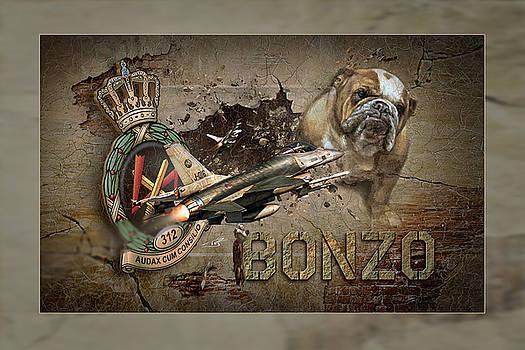 BONZO Image by Peter Van Stigt