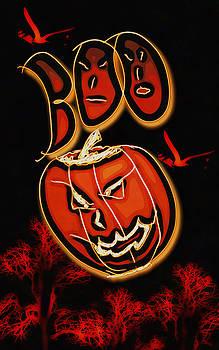 Boo by Philip A Swiderski Jr
