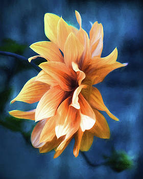 Book Of Days - Flower Art by Jordan Blackstone