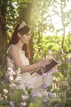 Book Of Fairytales by Amanda Elwell