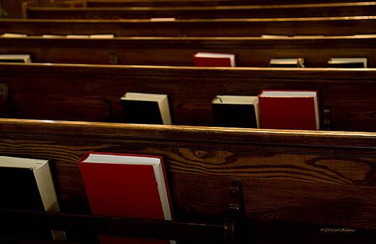 Book of Worship I by Carol Hathaway