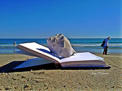Book On Myrtle Beach by Joey OConnor