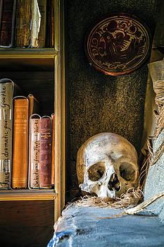 Bookcase Skull by Jack Nevitt