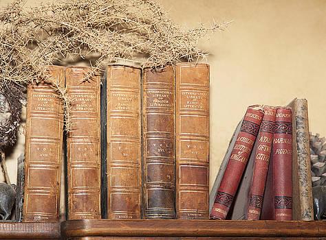 Ramunas Bruzas - Books