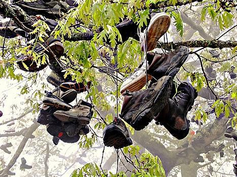 Joe Duket - Boot Tree at Neels Gap