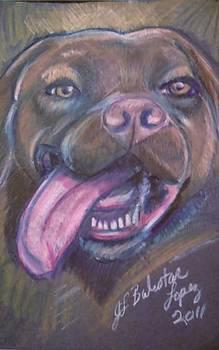 Jamey Balester - Bordeaux Mastiff Portrait