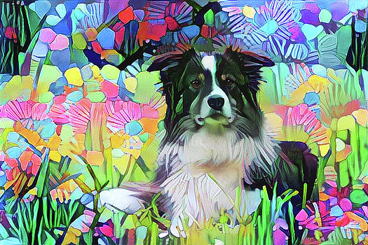 Border Collie in Field of Flowers by Peggy Collins