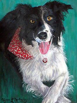 Cody the Border Collie by Karen Dortschy