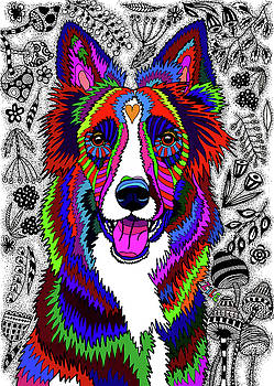 Border Collie by ZileArt