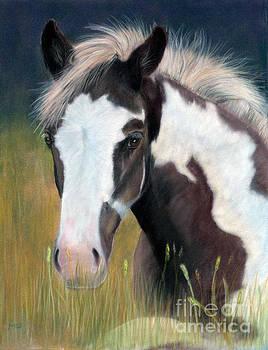 Born Free by Marianne Harris