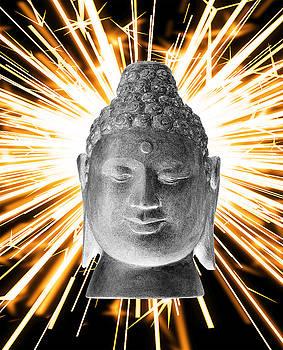 Borobudur Enlightenment  by Terrell Kaucher