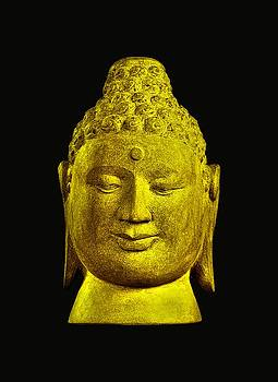 Borobudur gold  by Terrell Kaucher