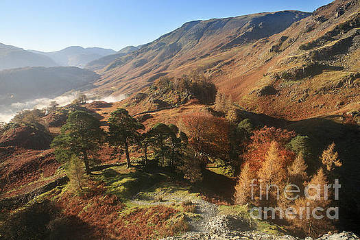 Borrowdale from Castle Crag by Bryan Attewell