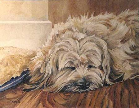 Bosley's Nap by Cheryl Pass