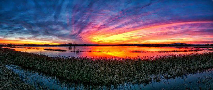 Bosque Sunrise by Kristal Kraft